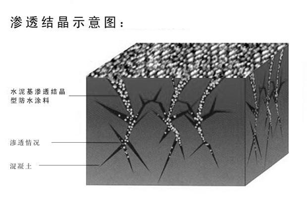 水泥基渗透结晶型防水涂料防水原理图